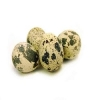 Перепелиные яйца, 10 шт