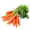 Морковь красная, пучок